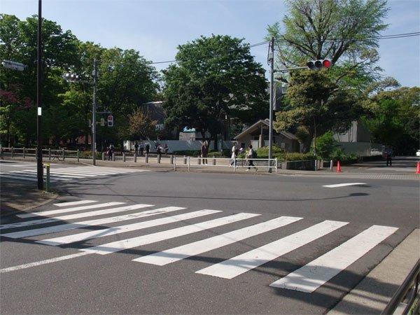 スタジオよもだ 台東区 レンタルスタジオ 上野恩賜公園