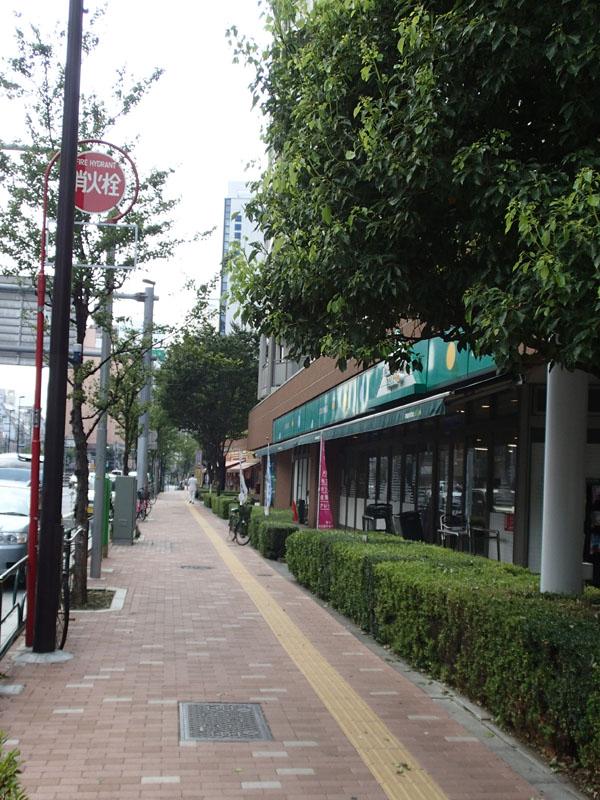 スタジオよもだ → 日暮里 大屋商店