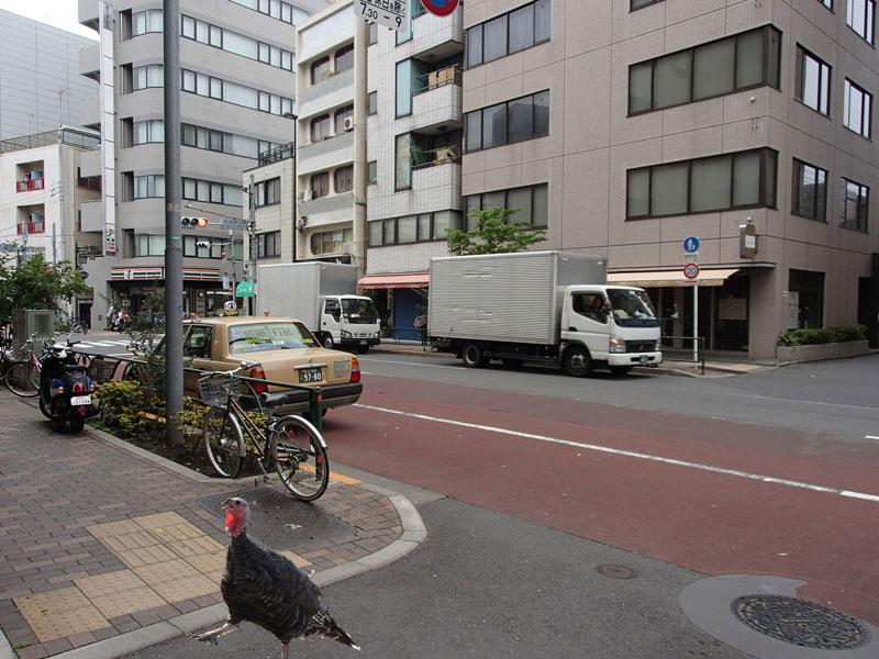 スタジオよもだ → 七麺鳥 鶯谷