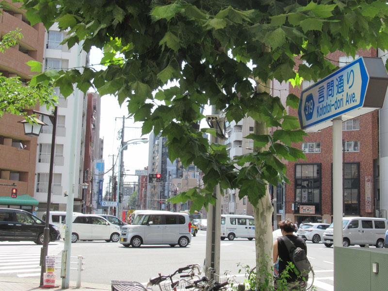 スタジオよもだ → 浅草花やしき 台東区