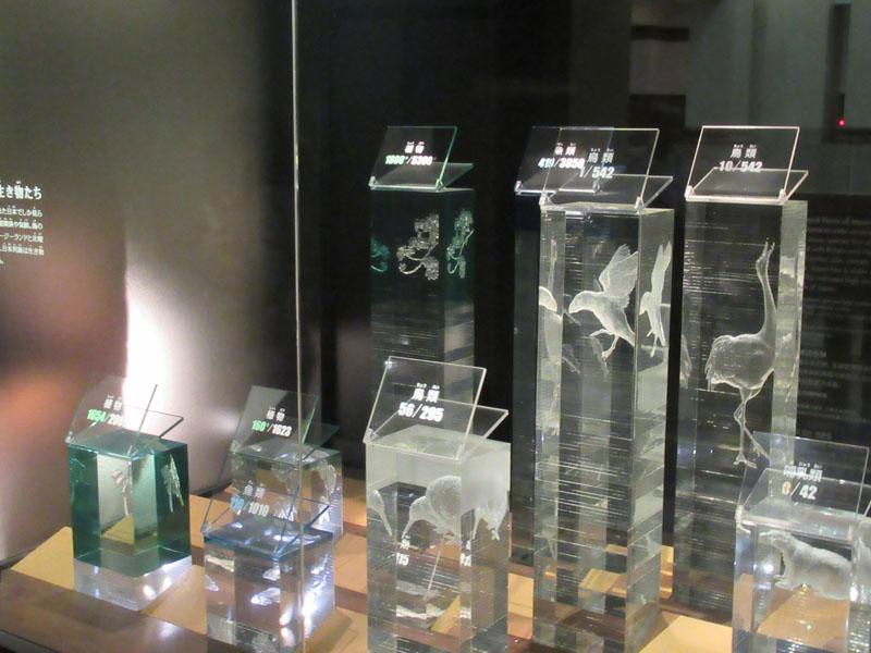 スタジオよもだ → 国立科学博物館 上野
